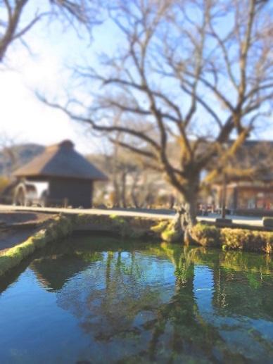 茅葺屋根と忍野八海の湧水群