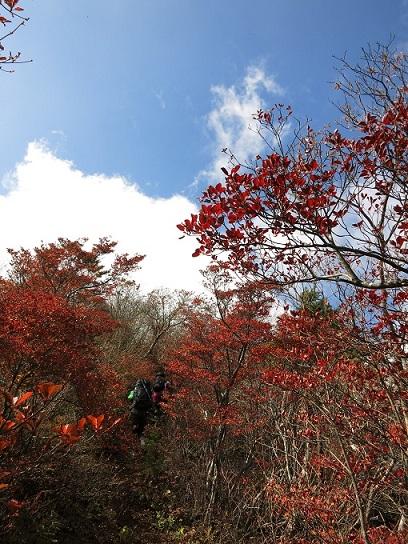 鬼ヶ岳の山頂紅葉
