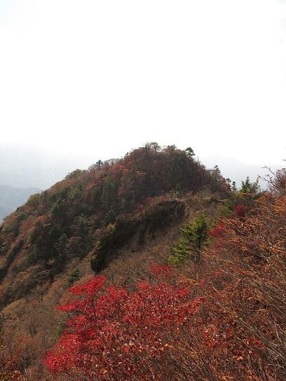 紅葉越しに見えるのが雪頭ヶ岳