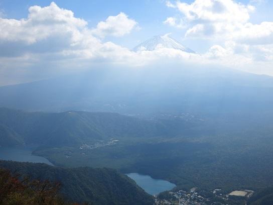 青木ヶ原樹海日本の象徴富士山