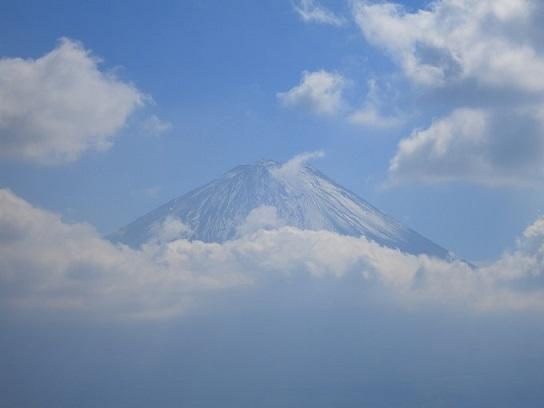 富士山青木ヶ原樹海