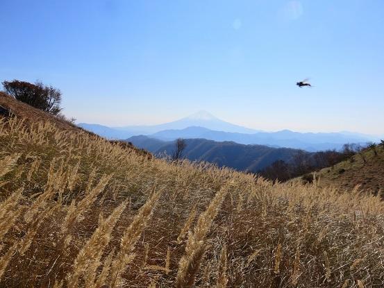 富士山と湯ノ沢峠登山道