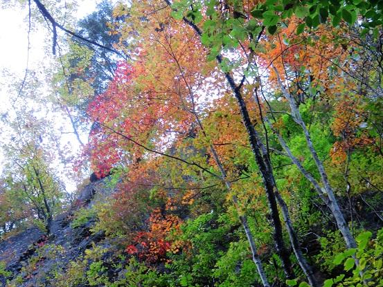 落合三つの滝紅葉