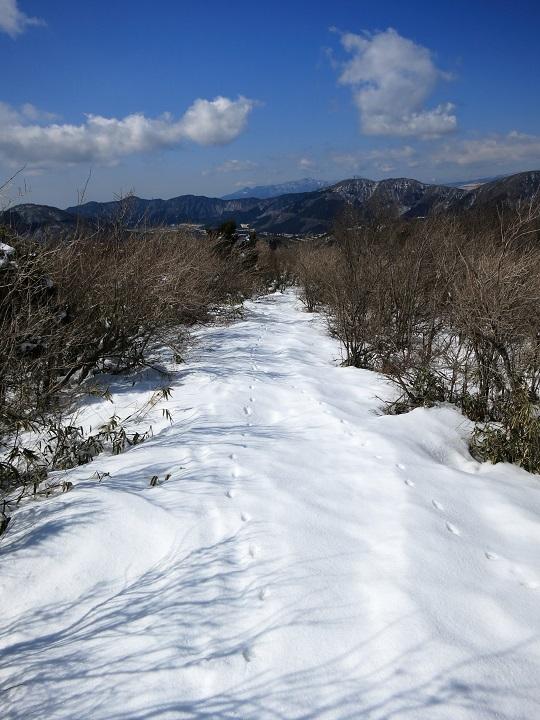 箱根の金時山登山