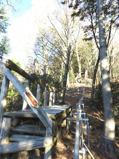 登山道と並行してモノレール