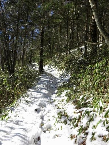 フルコンバから先大菩薩嶺登山道