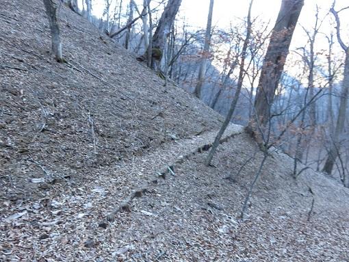狩場巡視道コースの様子