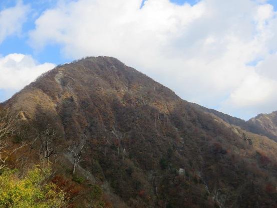 臼ヶ岳桧洞丸方面から見る蛭ヶ岳