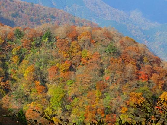 臼ヶ岳11月下旬くらいまでは錦の世界