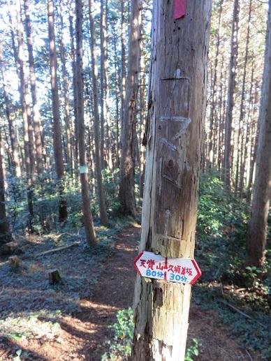 釜戸山への破線コース