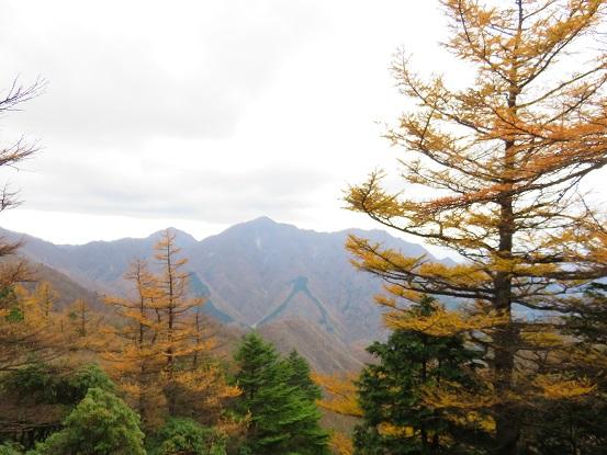 姫次からの桧洞丸の写真