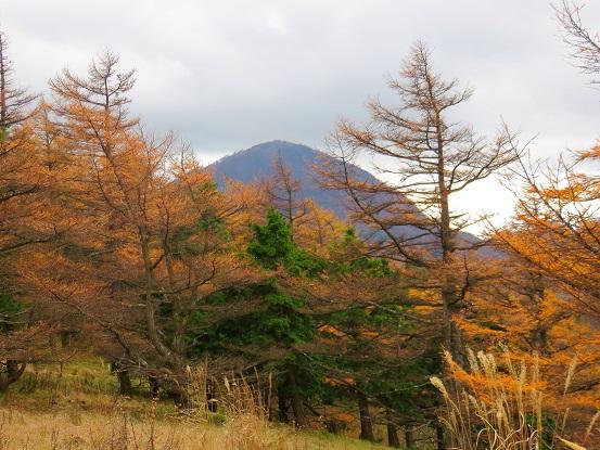 丹沢最高峰の蛭ヶ岳