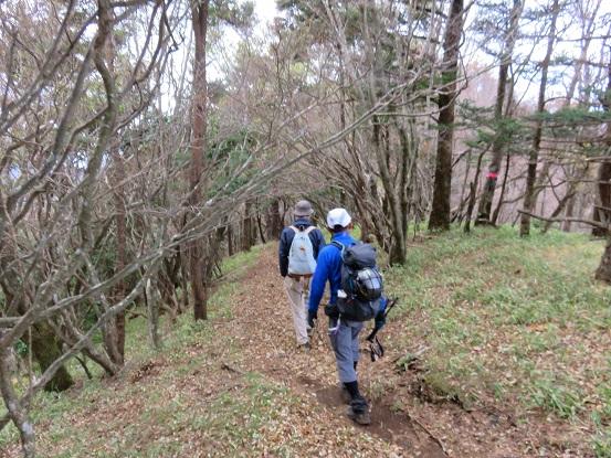 袖平山雰囲気の良い縦走路