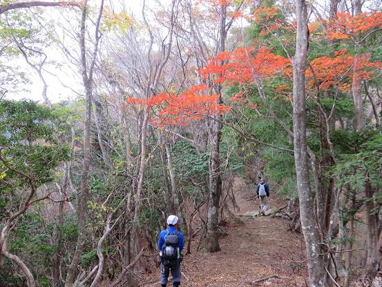 風巻尾根紅葉の見頃地帯