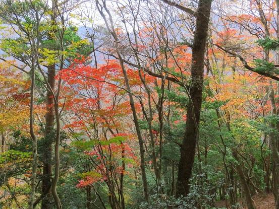 四季のある日本景色