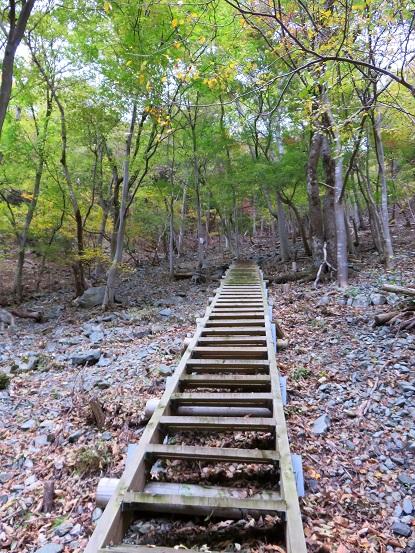 階段の急登