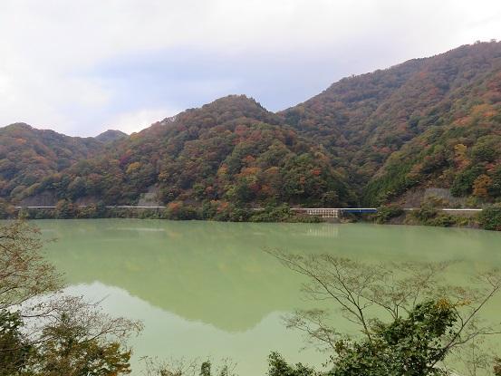 丹沢湖の水がだいぶ濁っている