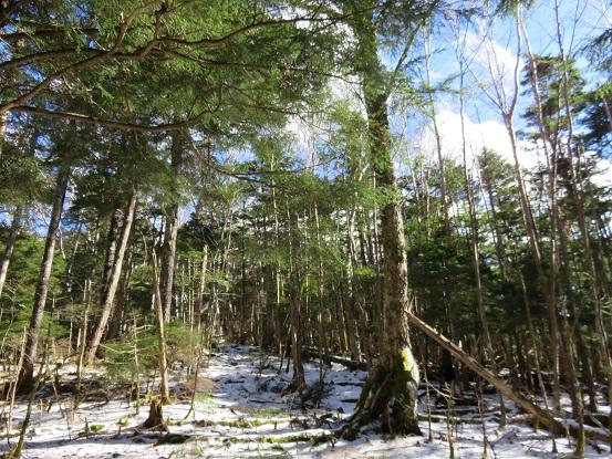 大ダオ周辺は青空と雪