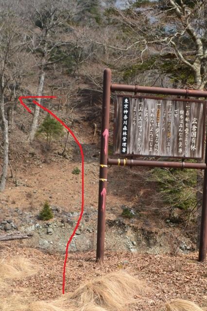 赤矢印方面に進むと蛭ヶ岳南陵の始まり