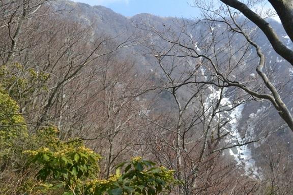 鬼ヶ岩から不動ノ峰の稜線丹沢主脈縦走路
