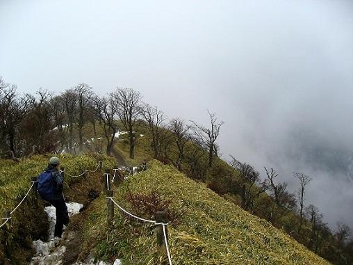 丹沢主稜縦走路から丹沢山・塔ノ岳を目指し