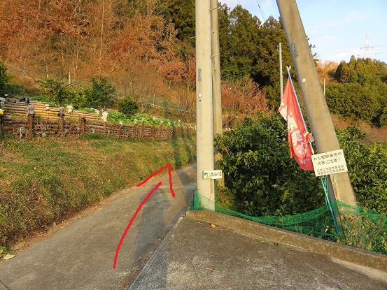鳥手山方面は赤矢印方面に進む