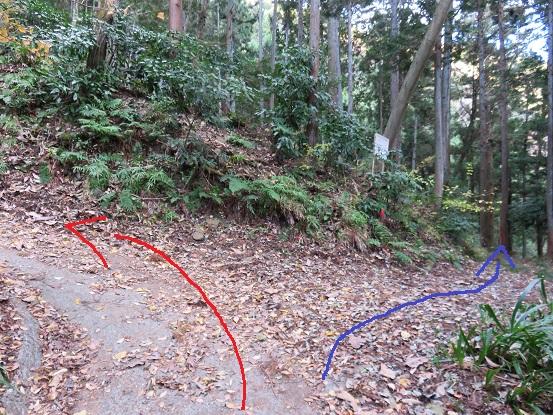 鳥手山まで舗装された林道