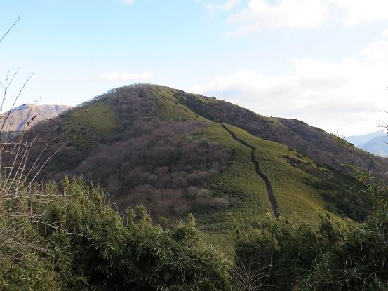 うぐいす茶屋から目指す明神ヶ岳へ至る稜線