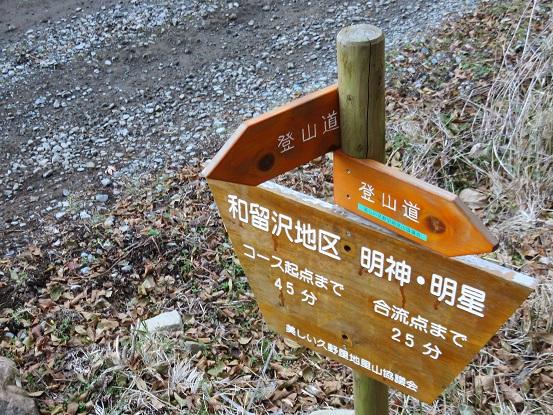 和留沢コース下ると林道