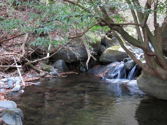 奥和留沢みはらしコース水が豊富な山域