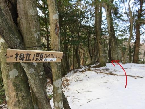 栂立ノ頭(標高849m)