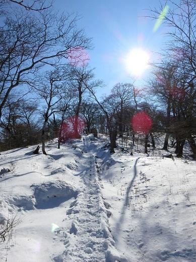 丹沢三峰も雪深い