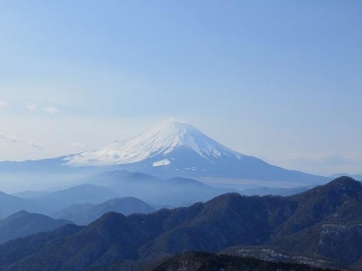 丹沢山から富士山