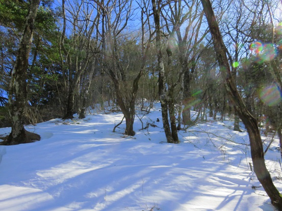 茶臼山からツボ足歩き