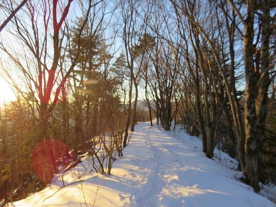 カチカチ山雪の尾根道