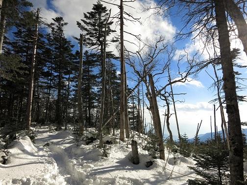 雪がある時期甲武信ヶ岳登山道の様子