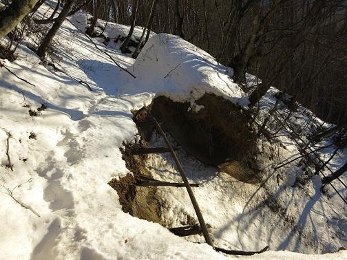 積雪期の近丸新道森林軌道