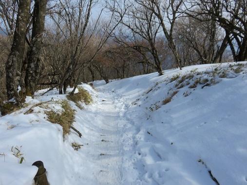 ボブスレーかルージュコースの様な登山道
