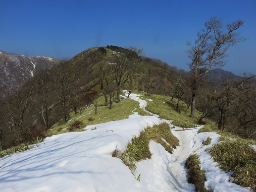 丹沢主脈縦走路残雪