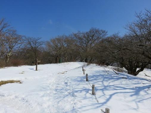 丹沢山から宮ヶ瀬湖を目指し登山でダイエット