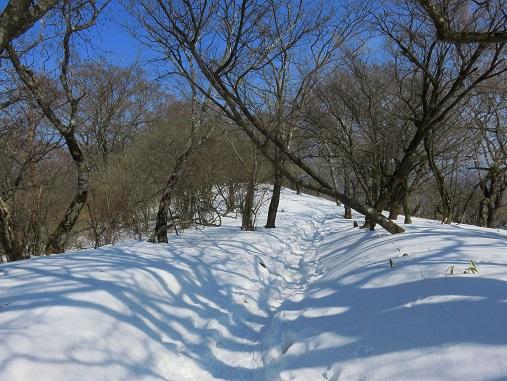 登山でダイエットコース雪の様子