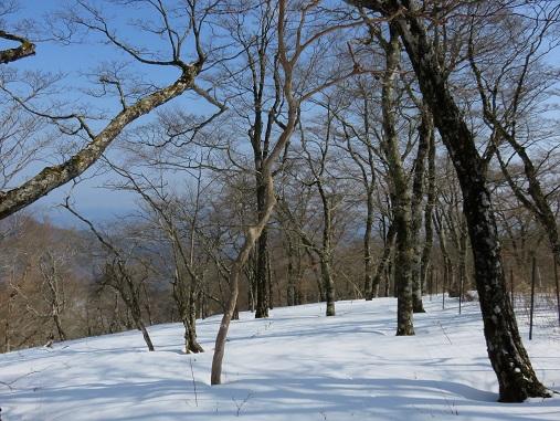 登山でダイエット純白の景色