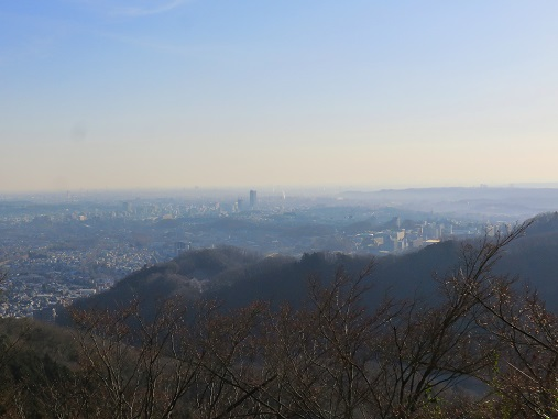 高尾山から見るスカイツリー