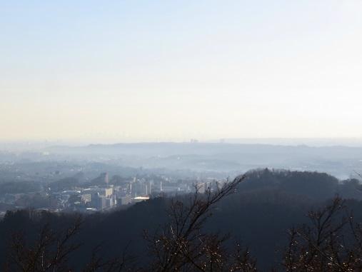 高尾山から見る八王子市街