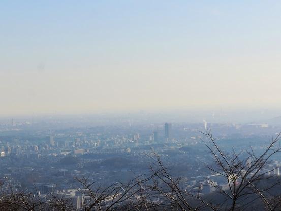 高尾山ビアマウント付近からの景色
