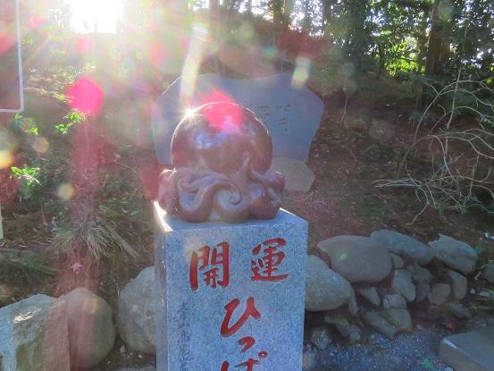 高尾山参道のタコ杉