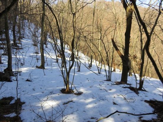 陣馬山周辺の雪