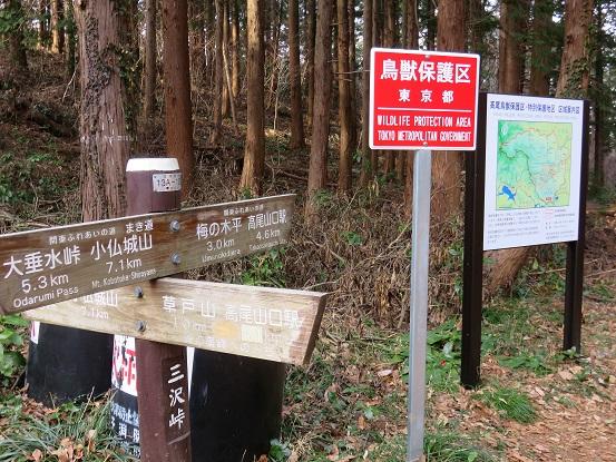 南高尾山稜三沢峠