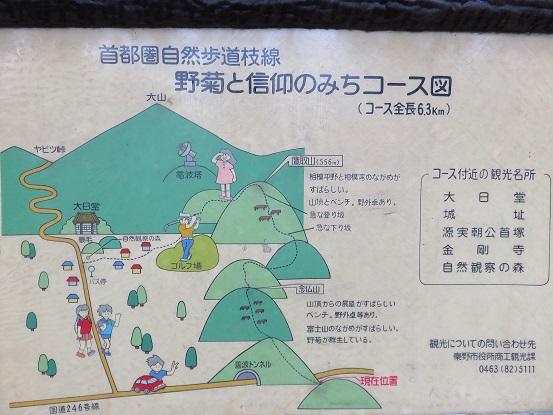大山野菊と信仰のみちの詳細図