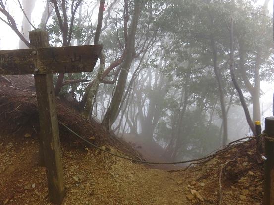 梅ノ木尾根の入口